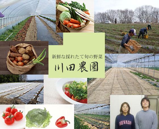 新鮮な採れたて旬の野菜 -川田農園-